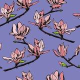 Vector il reticolo senza giunte Ornamento dei ramoscelli dei fiori della magnolia immagine stock