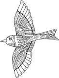 Vector il reticolo senza giunte Scarabocchio dell'uccello Fotografia Stock