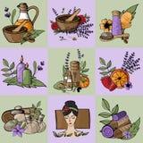 Vector il rilassamento delle icone, la stazione termale, il massaggio, il cosmetico organico, wellnes royalty illustrazione gratis