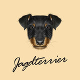 Vector Illustrated Portrait of Jagdterrier dog. Stock Photo