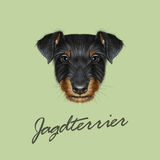 Vector Illustrated Portrait of Jagdterrier dog. Royalty Free Stock Photo