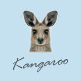Vector Illustrated portrait of Kangaroo. Stock Photos