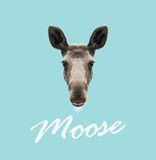Vector Illustrated Portrait of Moose. Royalty Free Stock Image