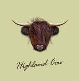 Vector Illustrated Portrait Of Highland Cattle Stock Images