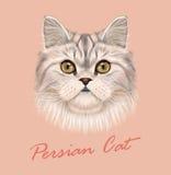 Vector Illustrated Portrait of Persian Cat. Stock Photo