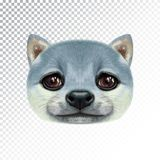 Vector Illustrated portrait of Shiba Inu Dog. Royalty Free Stock Photography