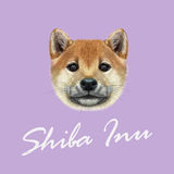 Vector Illustrated portrait of Shiba Inu Dog. Cute red face of domestic dog on violet background royalty free illustration