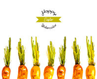 Vector illustrated watercolor Easter carrots background Stock Image