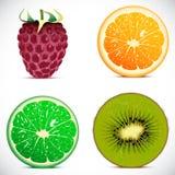 Vector illustratie - reeks vruchten pictogrammen Royalty-vrije Stock Afbeelding