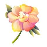 Vector illustratie van bloem Stock Foto