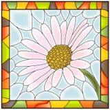 Vector illustratie van bloemkamille. Royalty-vrije Stock Fotografie