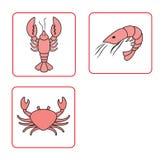 Vector illustratie van de reeks van zeevruchten Royalty-vrije Stock Afbeeldingen