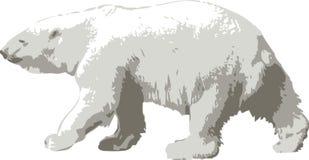 Vector illustratie van een ijsbeer royalty-vrije stock afbeelding