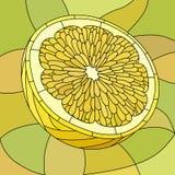 Vector illustratie van gele citroen. Royalty-vrije Stock Afbeeldingen