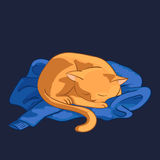 Vector illustratie van kat Stock Afbeeldingen