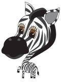 Vector Illustratie van leuke Zebra Stock Foto