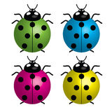 Onzelieveheersbeestjes (symbool van goed geluk) Royalty-vrije Stock Afbeelding