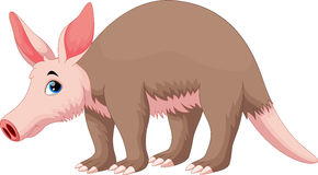 Vector illustration of Aardvark cartoon Stock Images