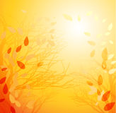 Abstract autumn background. Vector illustration abstract autumn background vector illustration