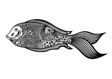 Vector illustration of abstract fish on white background Stock Photos