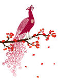 Vector illustration of abstract purple peacock on the red blossom tree branch. On white background Stock Photo