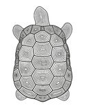 Vector illustration of abstract turtle Stock Images