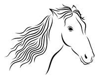 Vector illustration of abstract wild horse's head on white background. Royalty Free Stock Photography