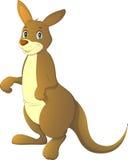 Vector illustration, adult kangaroo Stock Photography