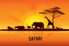 Vector illustration of Africa landscape. With wildlife and sunset background. Safari theme Stock Image