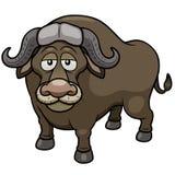African buffalo cartoon Royalty Free Stock Image