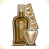 Vector illustration of alcohol drink Liqueur. Poster with brown bottle of premium irish coffee sweet booze and full glass tumbler, original typeface for word Royalty Free Stock Image