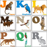 Vector illustration of alphabet animals from J to R Royalty Free Stock Image
