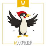 Vector Illustration Of Alphabet Letter W And Woodpecker. Eps 10 vector illustration