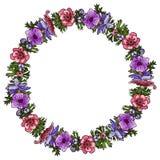 Vector illustration of anemone flower wreath. Composition o stock illustration