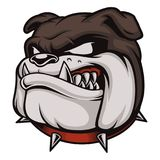 Head of Angry Bulldog. Vector illustration with angry bulldog. Logo with head of dog. Isolated on white background Royalty Free Stock Image