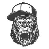 Head of gorilla. Vector illustration, angry gorilla head in the baseball hat on a white background Royalty Free Stock Photo