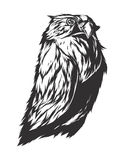 Vector illustration with angry owl Royalty Free Stock Images