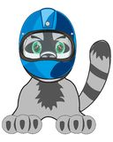 Vector illustration animal cat in defensive helmet of the racer royalty free illustration