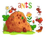 Vector illustration with an anthill and ants. stock illustration