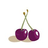Vector illustration of appetizing cherries. Royalty Free Stock Images