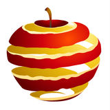 Vector illustration of an apple cutaway Royalty Free Stock Photo