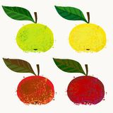 Vector illustration of apple fruits Royalty Free Stock Image
