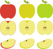 Vector illustration of apples. Isolated vector illustration of green, red and yellow apples Stock Image