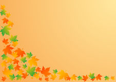 Vector illustration an autumn background. Vector illustration an autumn orange background with leaves stock illustration