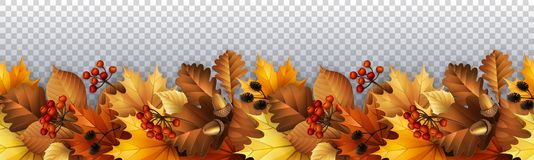Autumn with leaves, berries and cones. Vector illustration - Autumn background with leaves, berries and cones. EPS 10 Vector Illustration