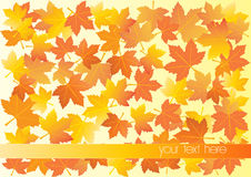 Vector illustration of autumn background Royalty Free Stock Images