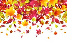 Vector illustration of autumn border background with falling leaves Royalty Free Stock Photos