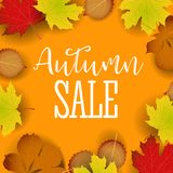 Autumn calligraphy. Seasonal lettering.web banner template.vector illustration Royalty Free Stock Photos
