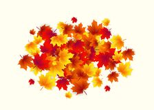 Vector illustration of autumn circle round background with falling leaves maple Royalty Free Stock Image