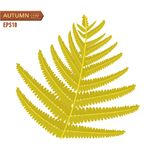 Autumn fern leaf isolated on a white background. Vector illustration. Vector illustration of Autumn fern leaf isolated on a white background Royalty Free Stock Image